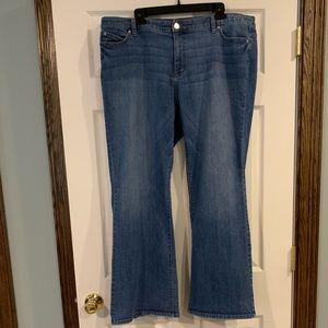 Jennifer Lopez Bootcut Jeans 18W short